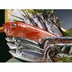 魚がおいしいと思う都道府県とは?