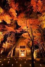 長野県・軽井沢町 「軽井沢高原教会」で晩秋を楽しむ紅葉ライトアップ開催