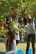 長野県飯綱町でプチ農園体験! 「りんご体験ツアー」で旬の果物を収穫!