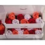 ワコール、丸めるとバラの花に見えるブラ&ショーツを発売