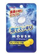 発泡系タブレットで食後に瞬間スッキリ!「マウッシュ」新発売 - ロッテ