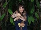 群馬県太田市にあるヘビの動物園で金運&健康運アップ! 怖かわいい体験も