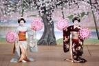 京都の花街、上七軒で舞妓が華麗な芸を披露する「北野をどり」開催