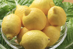 汚れ落としとしてレモンを利用できないのは?【住まいの毎日クイズ】