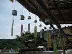 佐賀県、伊万里焼の風鈴が夏風を受けて響く「風鈴まつり」開催