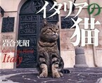 世界遺産×猫の写真集「イタリアの猫」発売! -動物写真家・岩合光昭