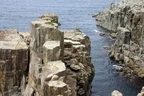 「崖っぷち」じゃない!!絶景スポットとして知られる断崖絶壁巡り7つ「三段壁/和歌山県白浜町」