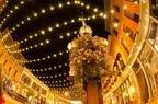 女性が選ぶクリスマスデートで行きたいスポット「横浜」「表参道」「六本木」「ディズニー」