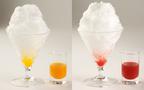 【週末のおでかけ】食べてもキーンとしない! 天然氷を使った極上のかき氷が食べられるお店