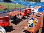 親子でゆったり野球観戦! この夏の穴場スポット「明治神宮野球場」