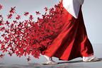 太宰府天満宮×ニコライ・バーグマンによるフラワーアート展『伝統開花』開催