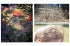 川内倫子×テリ・ワイフェンバック、二人展「Gift」がIMAギャラリーで開催