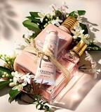 ロクシタン、夏に向けた限定ボディケア - ボディオイルやリップグロス、蘭の花やフルーツの香り