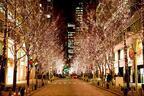 2016年イルミネーションまとめ  - 東京、大阪、名古屋、仙台などおすすめスポットを特集