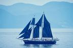 「旅するジーンズ」カイハラデニムを船帆に!潮風でウォッシュ加工したデニム使用のパンツやバッグ限定発売