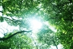 爪って日焼けするの?紫外線が強い季節に気を付けたい爪のUV対策4つ
