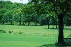 公園でリラックスできる過ごし方とは?名前の最初の文字でわかるコトダマ診断