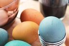 ブーム再来!?ゆで卵ダイエットで、手軽に上手にやせちゃおう!