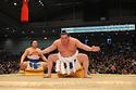 3月10日(日)からはじまる、大相撲春場所の新番付が発表!