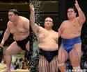 大相撲一月場所は3大関の奮闘に注目!