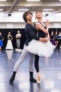 開幕目前、東京バレエ団が挑む新たな『白鳥の湖』