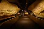 間近で体感できる約2万年前の洞窟壁画がついに来日