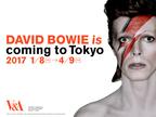 デヴィッド・ボウイの大回顧展、来年1月より開催