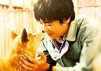 堺雅人の新たな一面も。主演作『ひまわりと子犬の7日間』予告公開