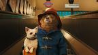世界中で愛され続ける紳士なクマが映画館に!