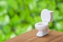 家族で健康に! トイレ風水に関するまとめ