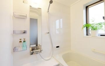 風呂場だけじゃない! 除去も防止もしたい、カビ対策まとめ