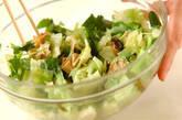 キャベツと湯葉の和えものの作り方6