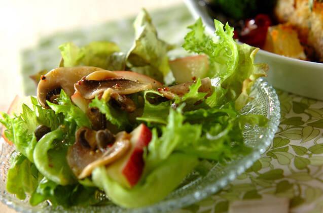 粒マスタードとオリーブオイルなどでマリネした、マッシュルームとレタスのサラダ。