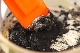 白玉入り黒ゴマ汁粉の下準備1