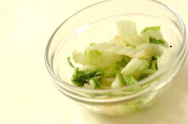 白菜の浅漬けの作り方の手順2