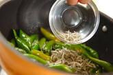 長唐辛子とジャコの炒め煮の作り方2