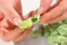 淡い緑のスープの作り方の手順2