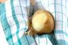 魚介のサフランスープの作り方の手順1