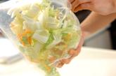 白菜の簡単もみ漬けの作り方1