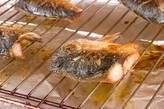 サバの塩焼きの作り方5