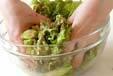 サニーレタスのサラダの作り方5