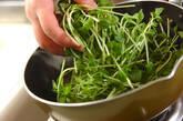 豆苗のオイスター炒めの作り方4