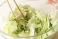 レタスと貝われ菜サラダの作り方1