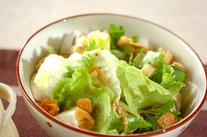 レタスのガーリックサラダ