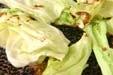 網焼き春キャベツの作り方1