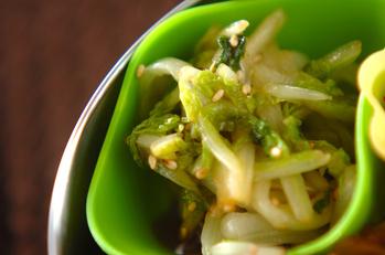 塩もみ白菜の中華和え