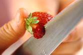 イチゴシロップとセミドライイチゴの下準備1