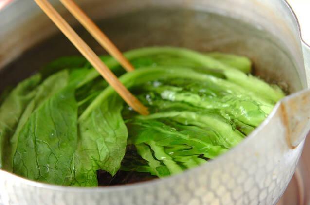 小松菜のカラシ和えの作り方の手順1