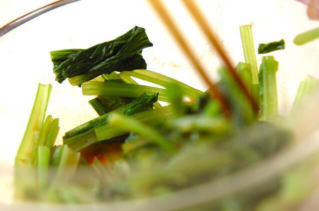 小松菜のカラシ和えの作り方の手順3