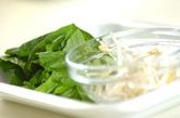 小松菜とモヤシの和え物の作り方1